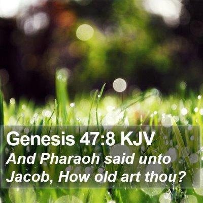Genesis 47:8 KJV Bible Verse Image