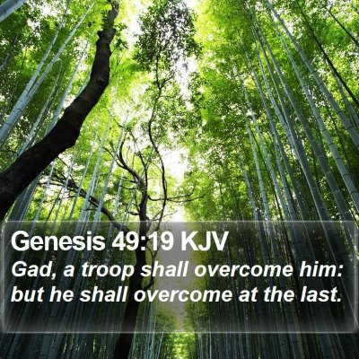 Genesis 49:19 KJV Bible Verse Image