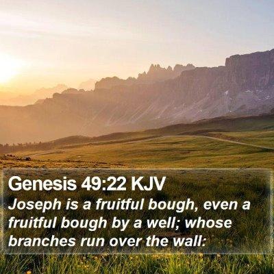 Genesis 49:22 KJV Bible Verse Image