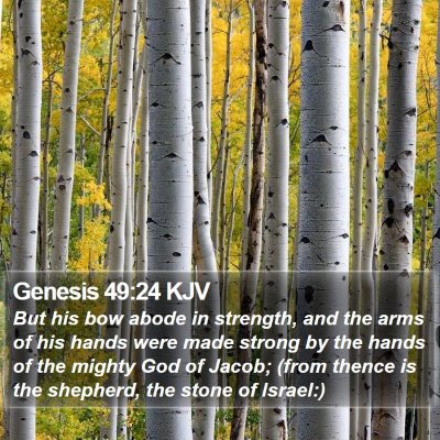 Genesis 49:24 KJV Bible Verse Image