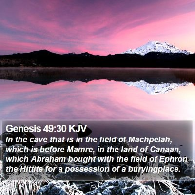Genesis 49:30 KJV Bible Verse Image