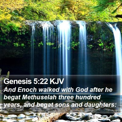 Genesis 5:22 KJV Bible Verse Image