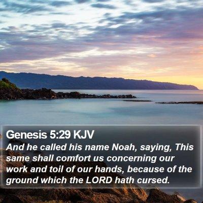 Genesis 5:29 KJV Bible Verse Image