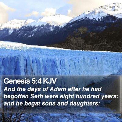 Genesis 5:4 KJV Bible Verse Image