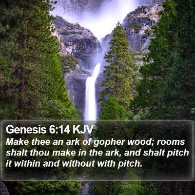 Genesis 6:14 KJV Bible Verse Image