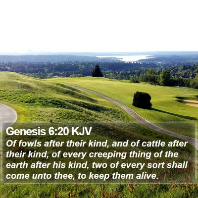 Genesis 6:20 KJV Bible Verse Image