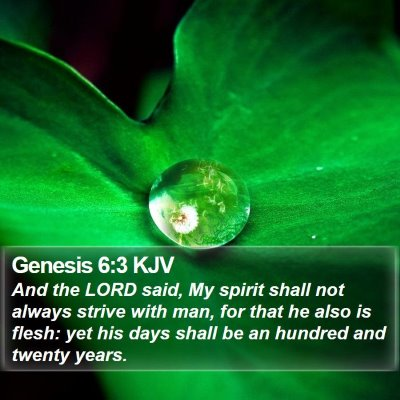 Genesis 6:3 KJV Bible Verse Image