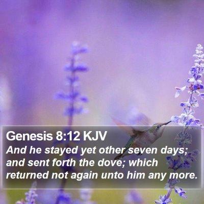 Genesis 8:12 KJV Bible Verse Image