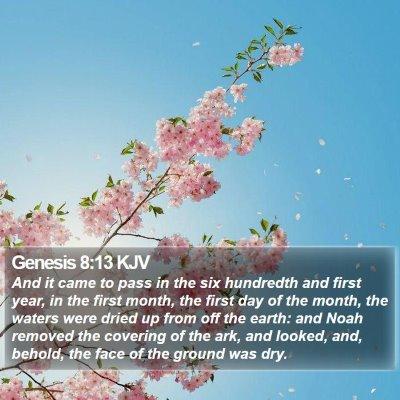 Genesis 8:13 KJV Bible Verse Image