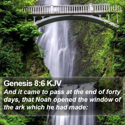 Genesis 8:6 KJV Bible Verse Image