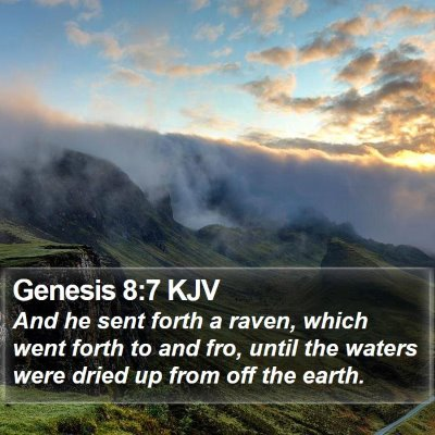 Genesis 8:7 KJV Bible Verse Image