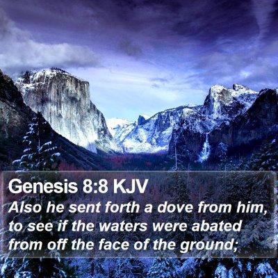 Genesis 8:8 KJV Bible Verse Image