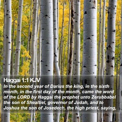 Haggai 1:1 KJV Bible Verse Image