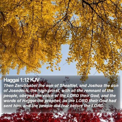 Haggai 1:12 KJV Bible Verse Image
