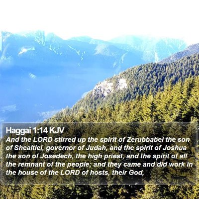 Haggai 1:14 KJV Bible Verse Image