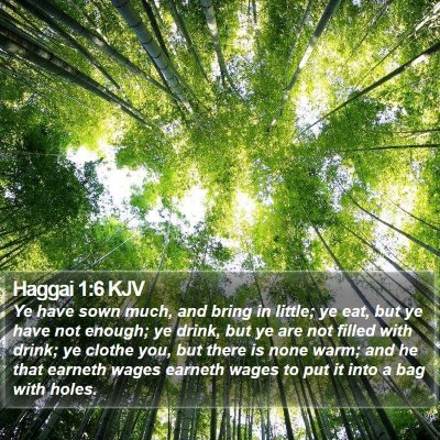 Haggai 1:6 KJV Bible Verse Image