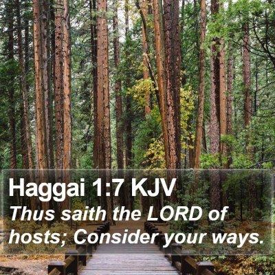 Haggai 1:7 KJV Bible Verse Image