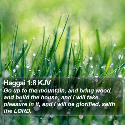 Haggai 1:8 KJV Bible Verse Image