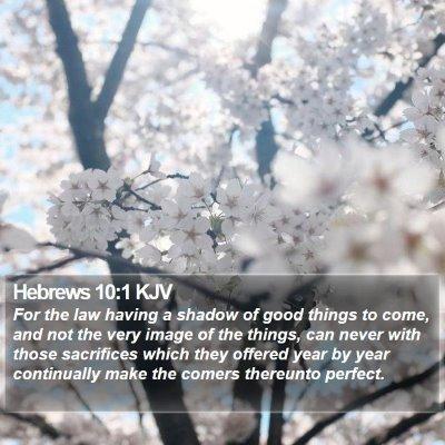 Hebrews 10:1 KJV Bible Verse Image