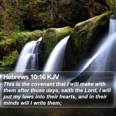 Hebrews 10:16 KJV Bible Verse Image