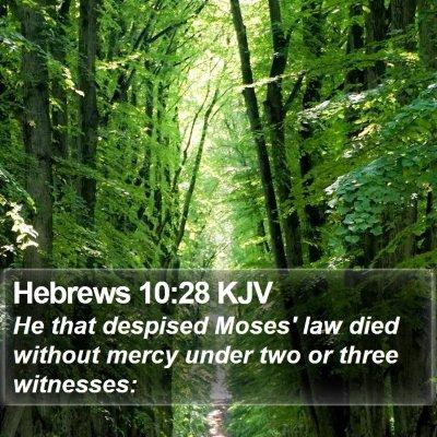 Hebrews 10:28 KJV Bible Verse Image