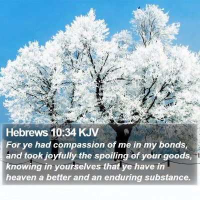 Hebrews 10:34 KJV Bible Verse Image