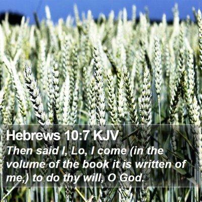 Hebrews 10:7 KJV Bible Verse Image