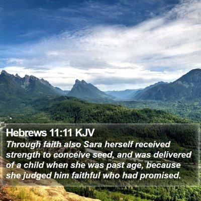 Hebrews 11:11 KJV Bible Verse Image