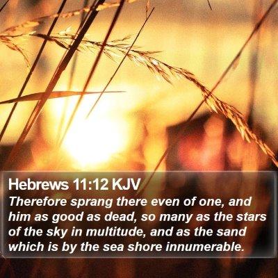 Hebrews 11:12 KJV Bible Verse Image
