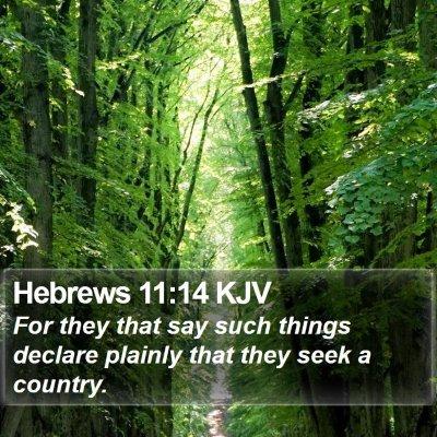 Hebrews 11:14 KJV Bible Verse Image