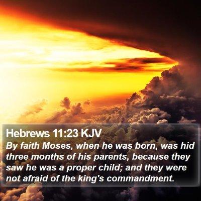 Hebrews 11:23 KJV Bible Verse Image