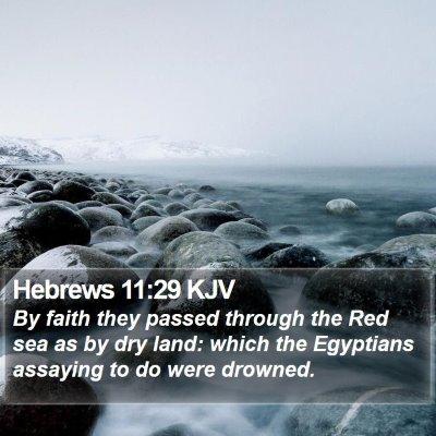 Hebrews 11:29 KJV Bible Verse Image