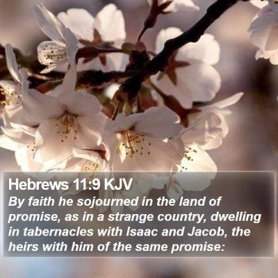 Hebrews 11:9 KJV Bible Verse Image