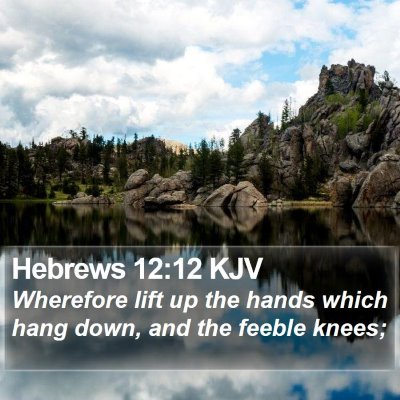 Hebrews 12:12 KJV Bible Verse Image