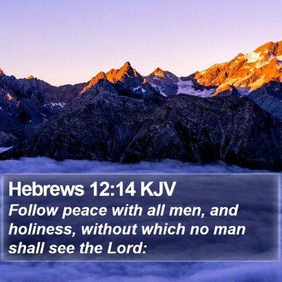 Hebrews 12:14 KJV Bible Verse Image