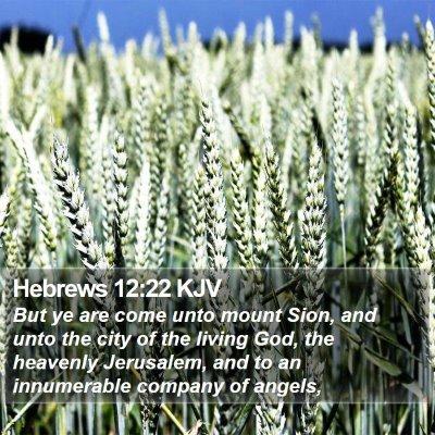 Hebrews 12:22 KJV Bible Verse Image