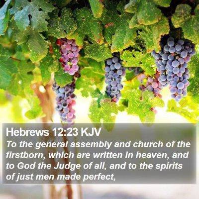 Hebrews 12:23 KJV Bible Verse Image