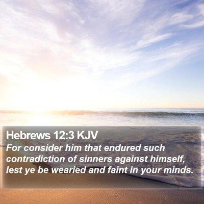 Hebrews 12:3 KJV Bible Verse Image