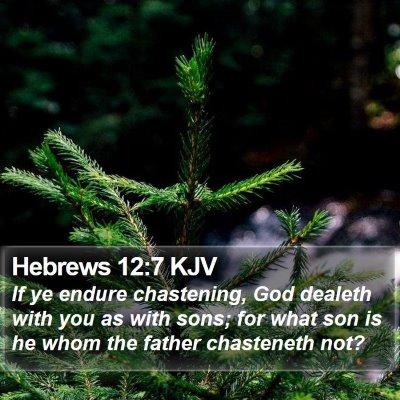 Hebrews 12:7 KJV Bible Verse Image
