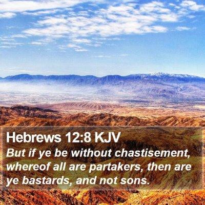 Hebrews 12:8 KJV Bible Verse Image