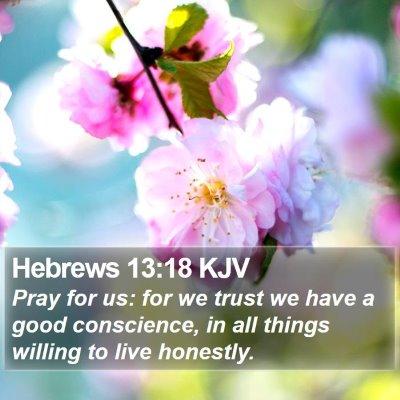Hebrews 13:18 KJV Bible Verse Image
