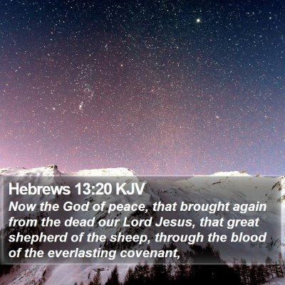 Hebrews 13:20 KJV Bible Verse Image