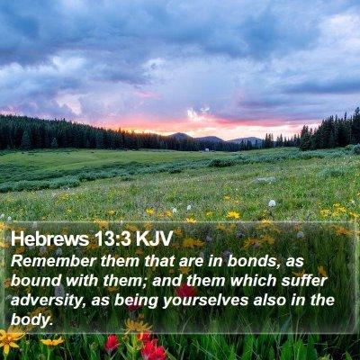 Hebrews 13:3 KJV Bible Verse Image