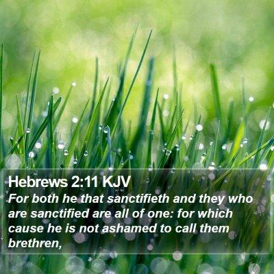 Hebrews 2:11 KJV Bible Verse Image