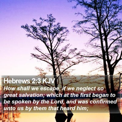 Hebrews 2:3 KJV Bible Verse Image