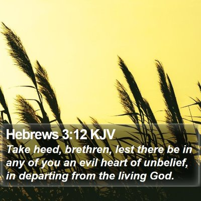 Hebrews 3:12 KJV Bible Verse Image