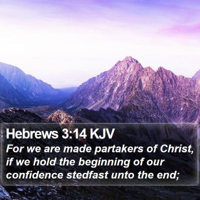 Hebrews 3:14 KJV Bible Verse Image