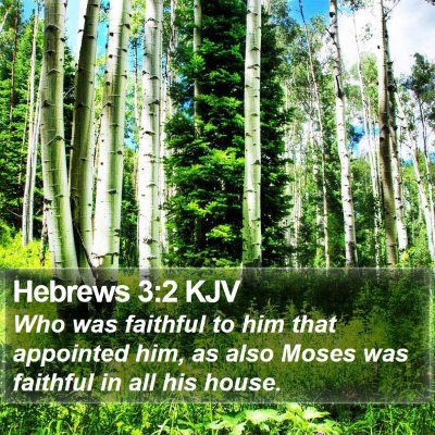 Hebrews 3:2 KJV Bible Verse Image