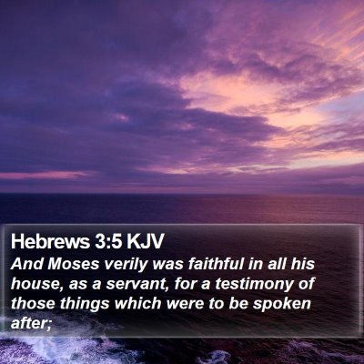 Hebrews 3:5 KJV Bible Verse Image