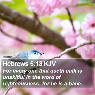 Hebrews 5:13 KJV Bible Verse Image